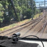 Project News: Sydney Trains weed management plan